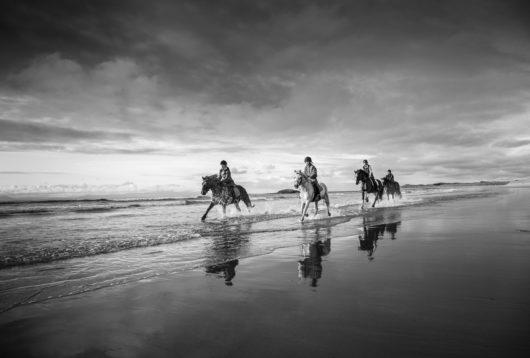 Irland Horse and Hound